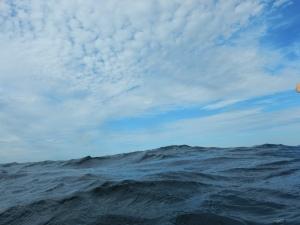 Metriset aallot niin horisontti ei näy. Eikä myös Juho.